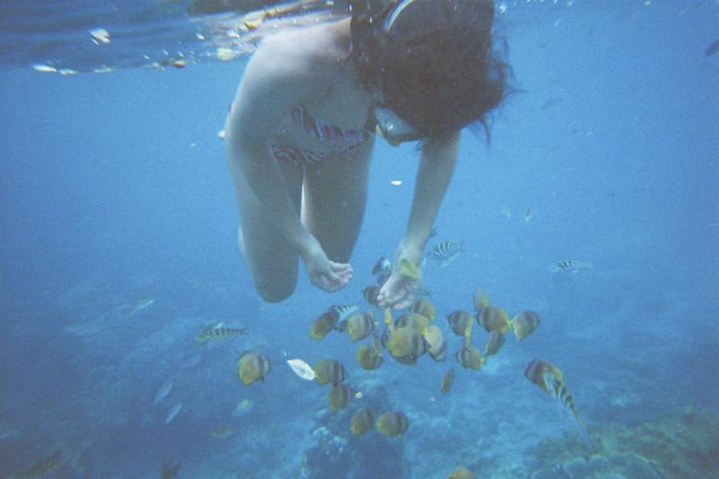 Schnorcheln Bali