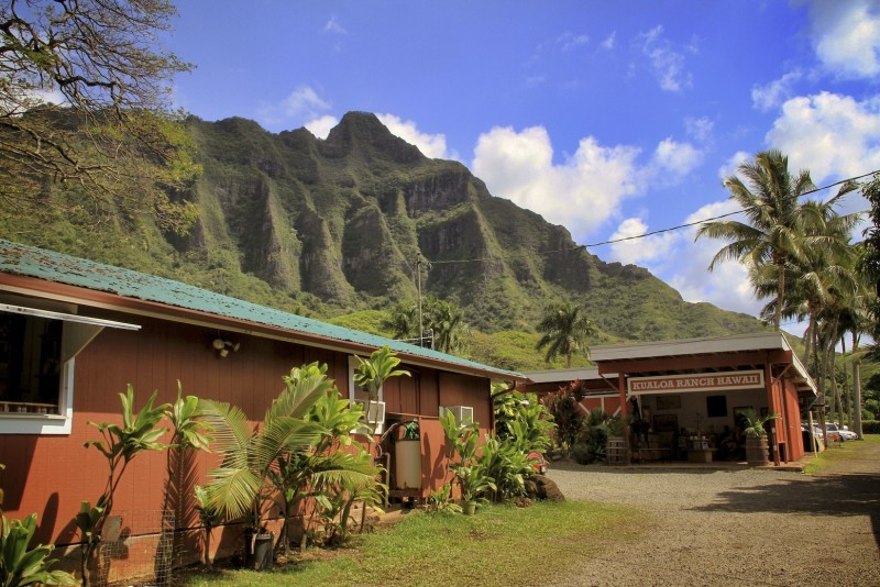 Hawaii O'ahu Waikiki
