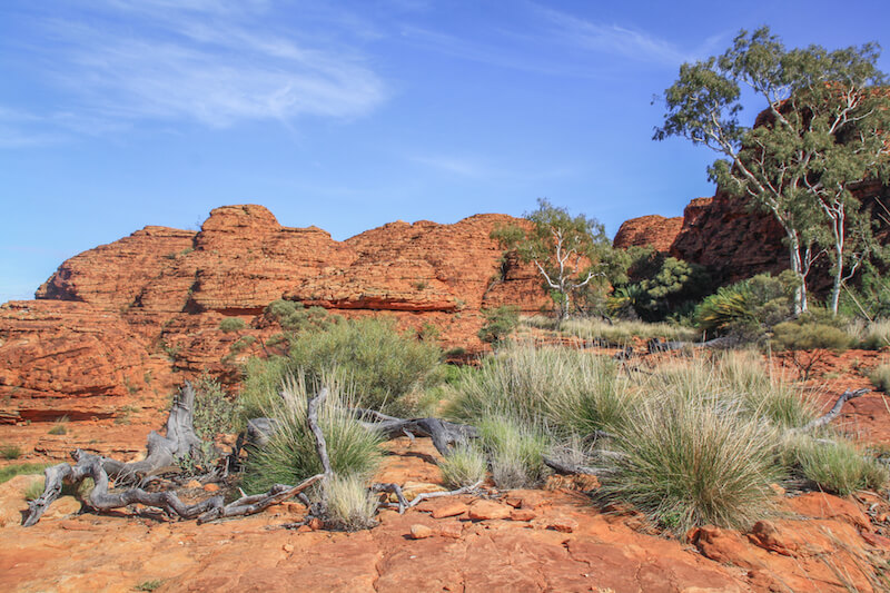 Ayers Rock Australien Outback Kings Canyon