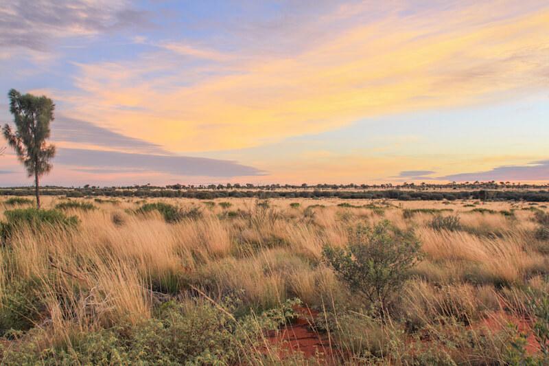 Ayers Rock Australien Outback Sonnenaufgang