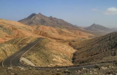 Fuerteventura Sehenswuerdigkeiten Montana Cardon