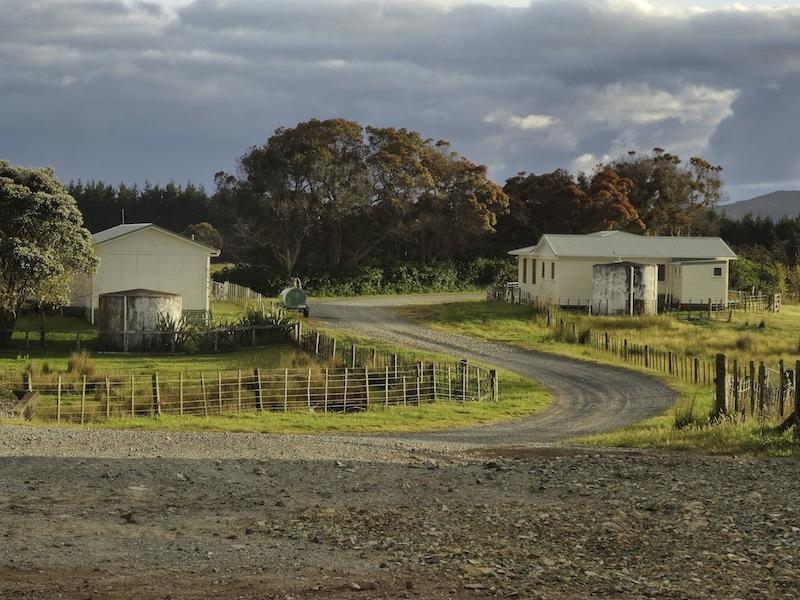 Schafsfarm Neuseeland Wwoofing
