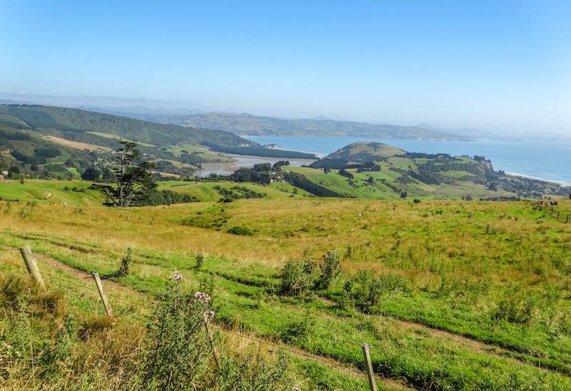 Wwoofing Neuseeland
