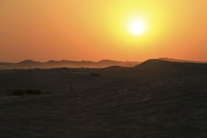 Abu Dhabi Wüste