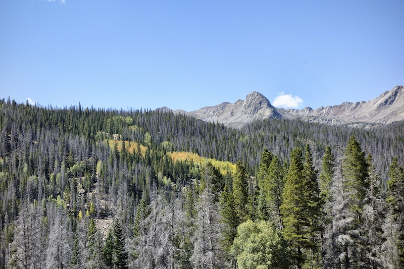 Indian Summer Rocky Mountains