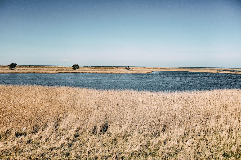 Ostsee Fischland Darss Zingst Boddenlandschaft