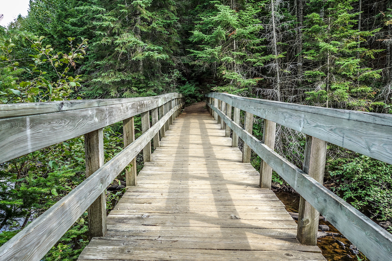 Algonquin Park Kanada