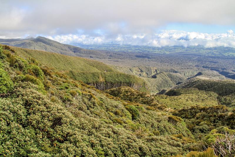 Neuseeland Taranaki Crossing