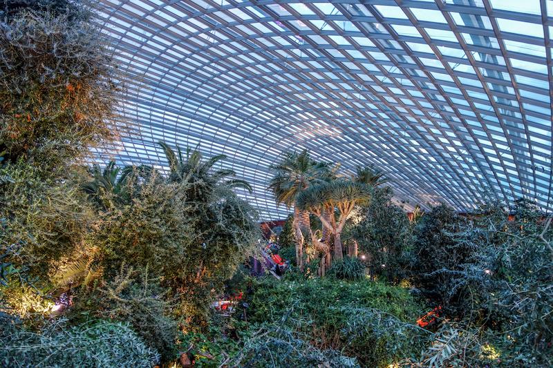 Singapur Flower Dome