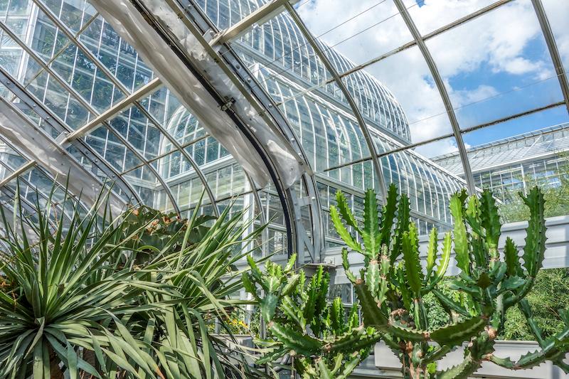 Washington DC Botanic Gardens