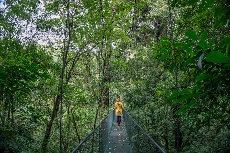 costa-rica-rundreise-monteverde-hanging-bridges