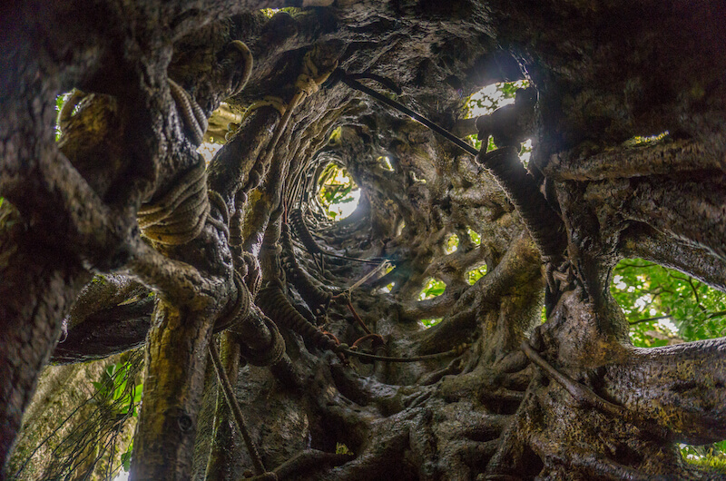 costa-rica-rundreise-monteverde
