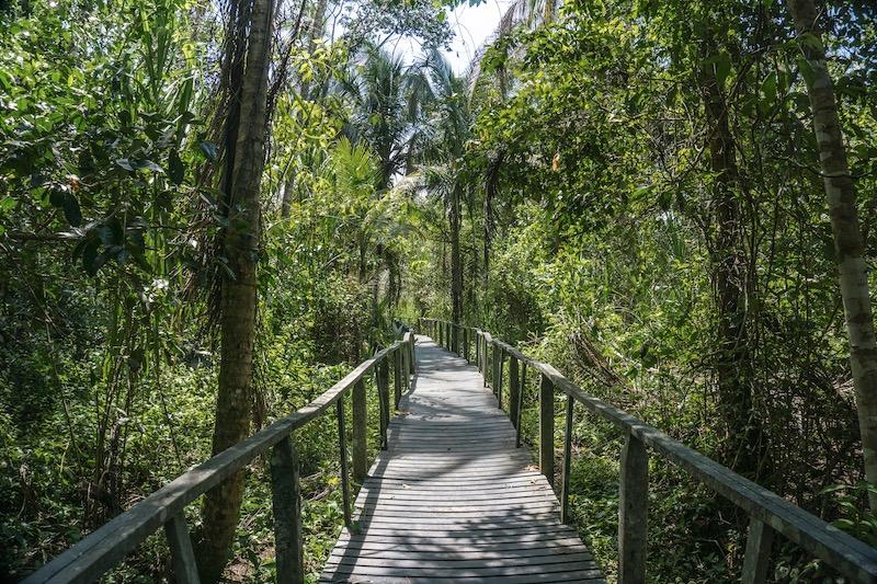 Cahuita Nationalpark Puerto Viejo