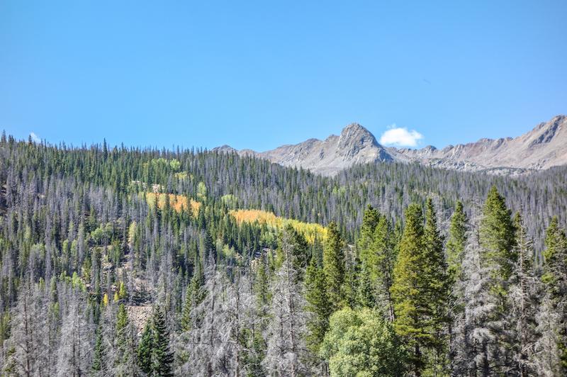 colorado-sehenswuerdigkeiten-rocky-mountain-nationalpark
