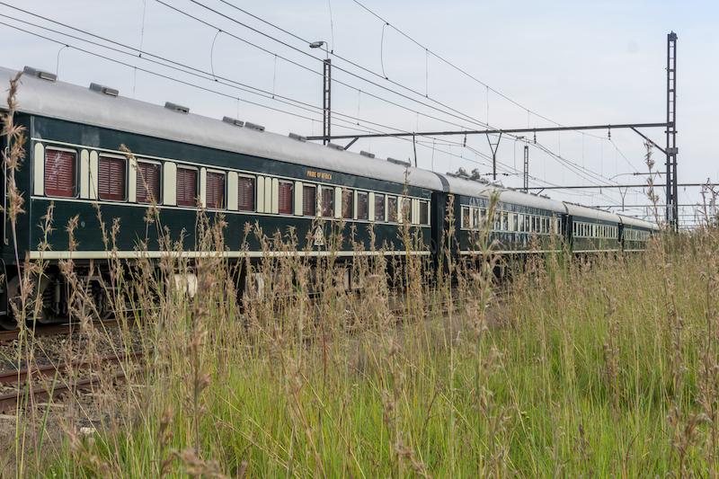 Rovos Rail Pride of Africa Safari Suedafrika