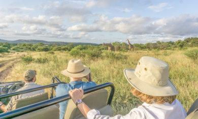 Safari in Suedafrika And Beyond Phinda Private Game Reserve