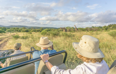 Safari in Suedafrika And Beyond Phinda Private Game Reserve
