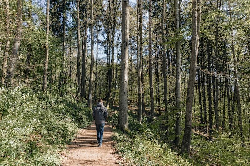 Saarschleife Wanderung Traumschleifen
