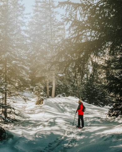 Mieminger Plateau Schneeschuhwandern Innsbruck Tirol