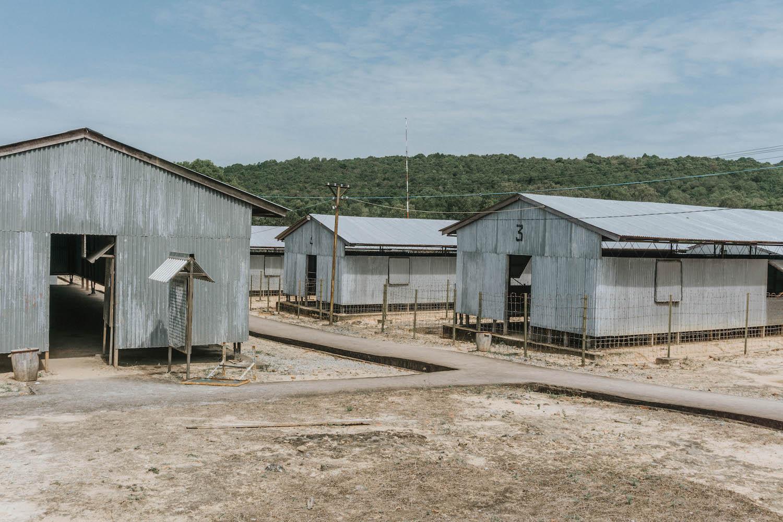 Phu Quoc Vietnam Coconut Tree Prison An Thoi