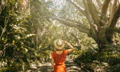 Traumberuf Reiseblogger Mit Reisen Geld verdienen