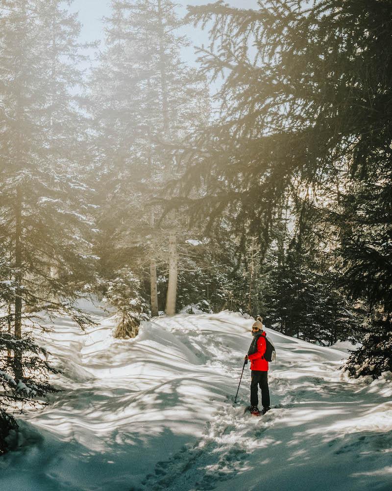 Mieminger Plateau Schneeschuhwandern