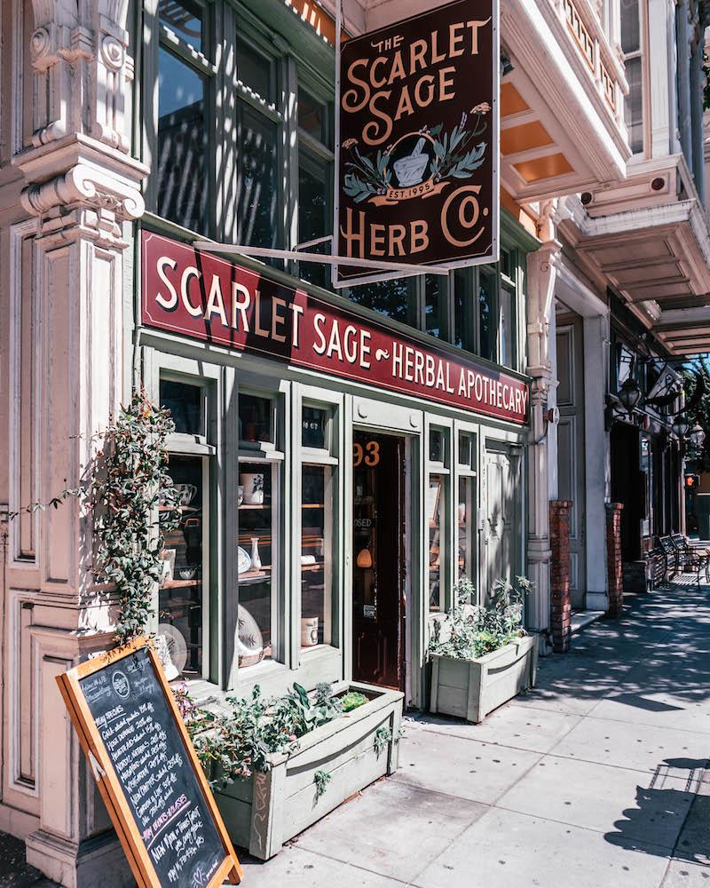Mission District San Francisco Scarlet Sage