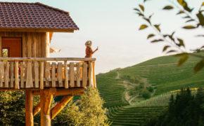 Urlaub im Schwarzwald Baumhaus