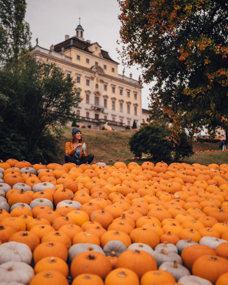 Stuttgart Kuerbisausstellung Schloss Ludwigsburg