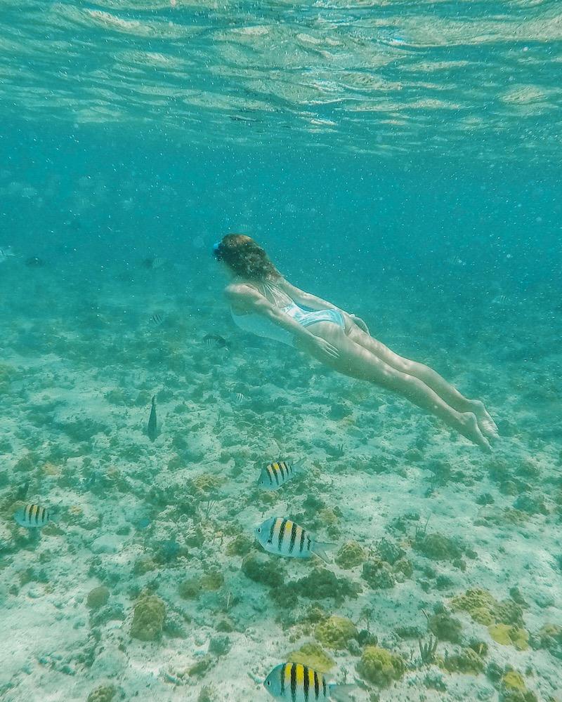 Nassau Paradise Island Schnorcheln