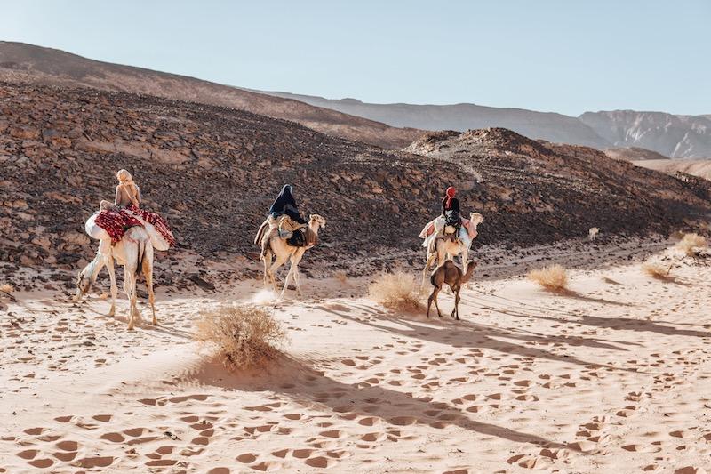 Wüstenreise Kamelreiten