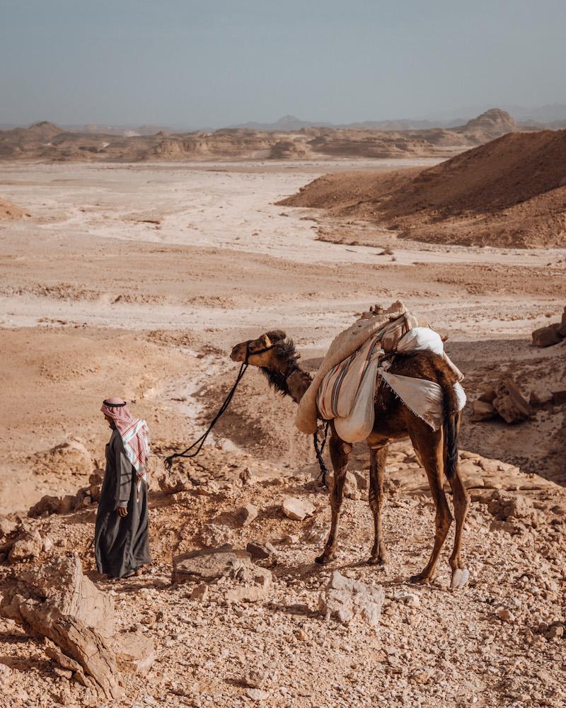 Wüstenreise mit Beduinen