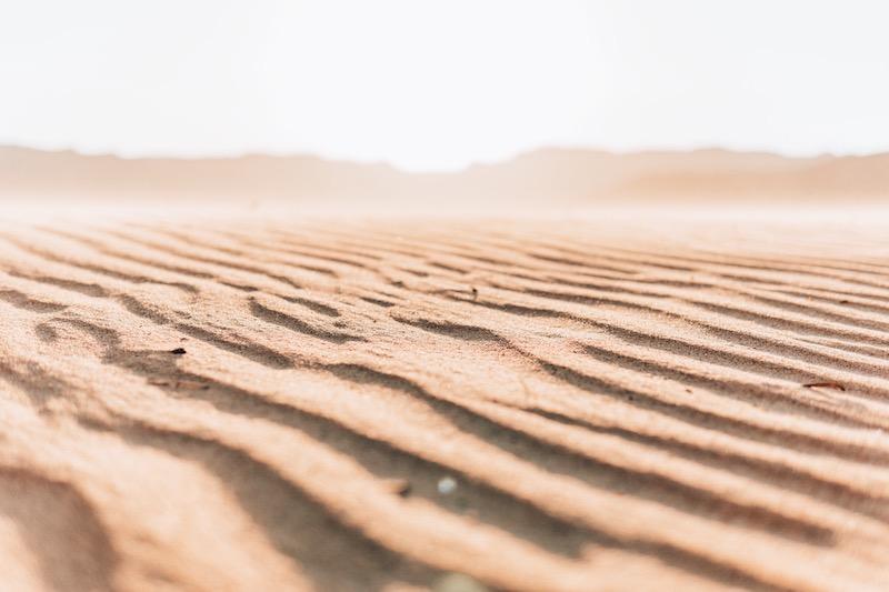 Wüstenreise Wüste Sinai