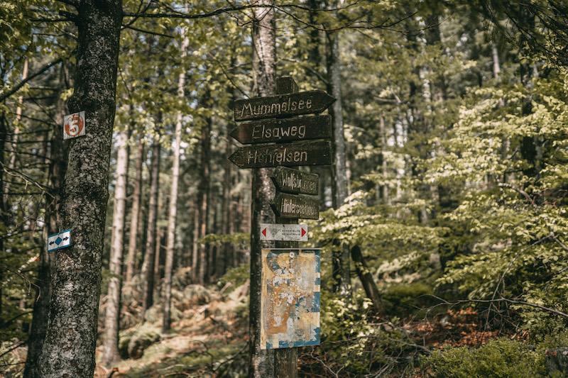 Ausflugsziele Baden Württemberg Mummelsee Hornisgrinde