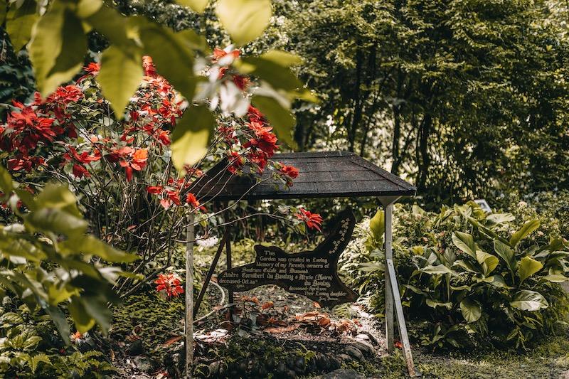 Saint Lucia Botanischer Garten