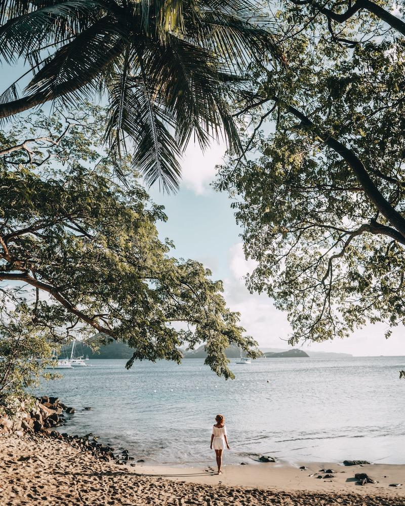 Saint Lucia Pigeon Island Beach