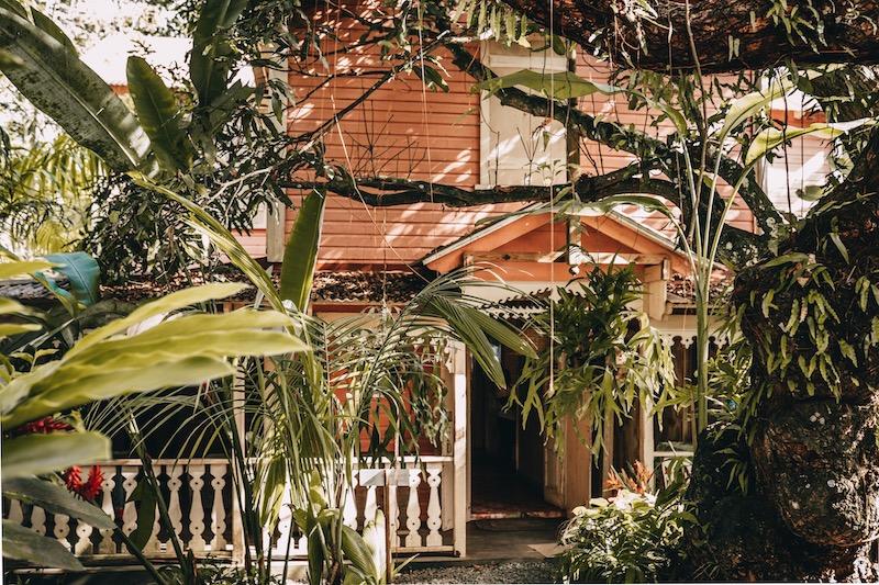 Saint Lucia Pink Plantation