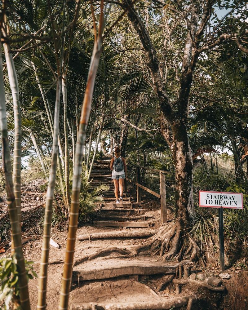 Saint Lucia Tet Paul Nature Trail