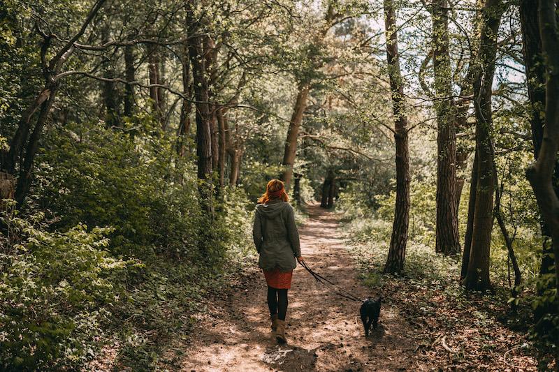 Usedom Tipps wandern