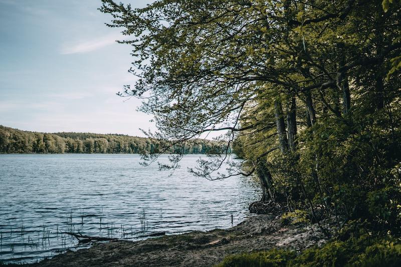 Usedom Wolgastsee Ufer