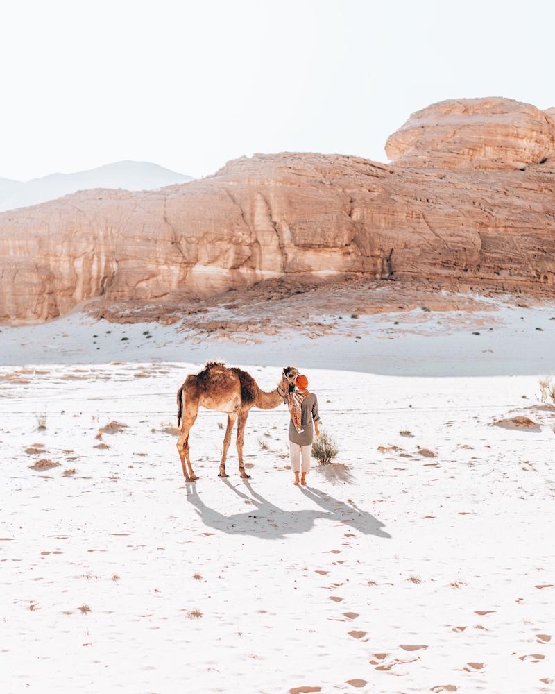 Wüste Sinai Ägypten