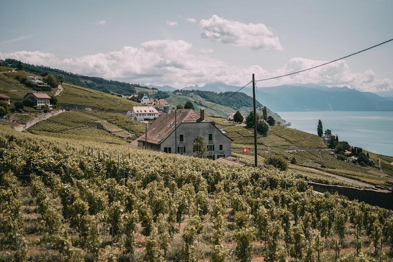 Lausanne Weinregion