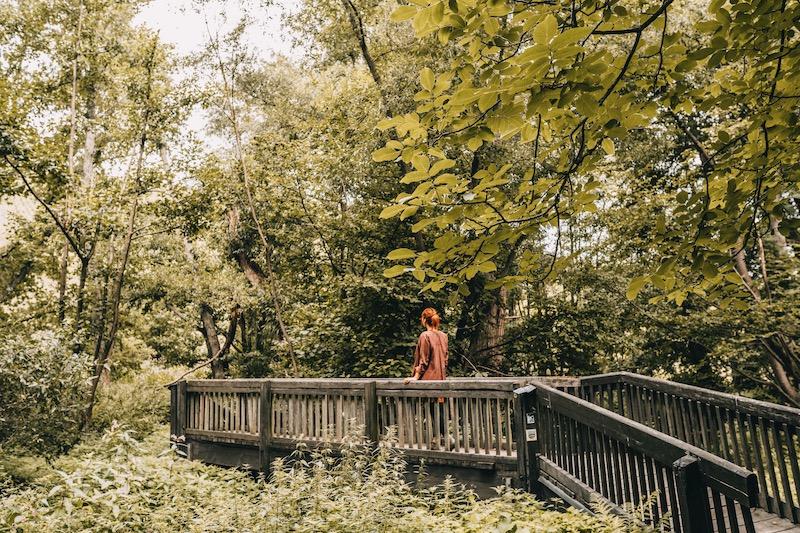 Mosel Urlaub Weindörfer Wanderweg