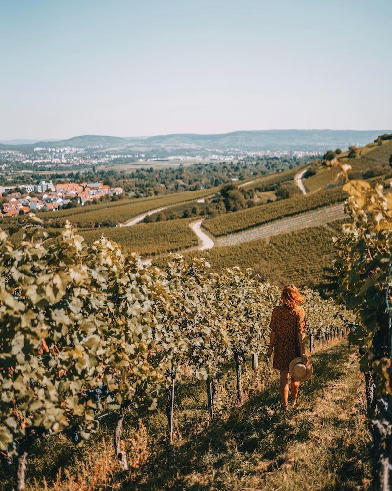 Ausflugsziele Stuttgart Fellbach Weinberge