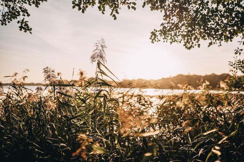 Krakower See Mecklenburgische Seenplatte