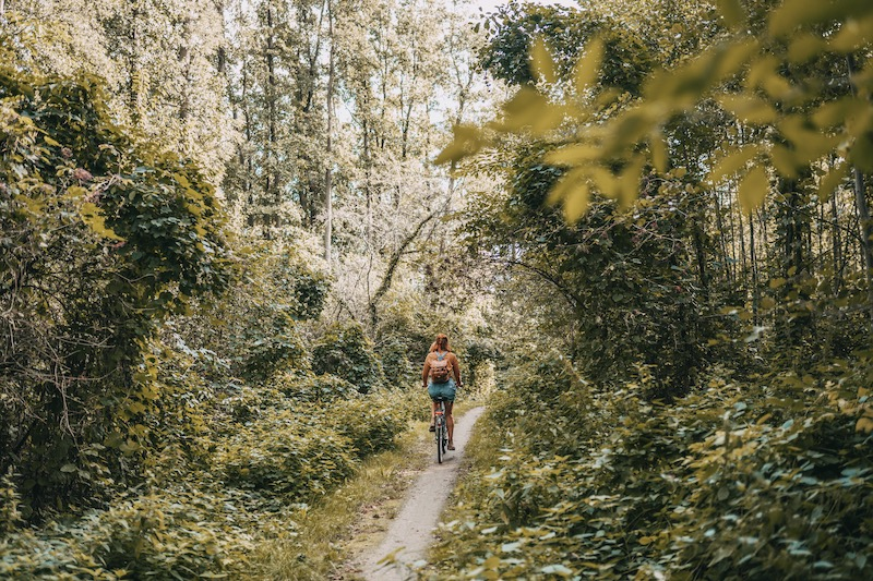 Mecklenburgische Seenplatte Fahrradtour