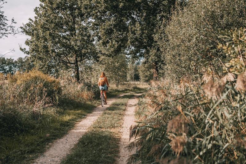 Mecklenburgische Seenplatte Fahrradweg