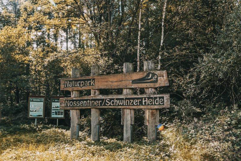Mecklenburgische Seenplatte Schwinzer Heide