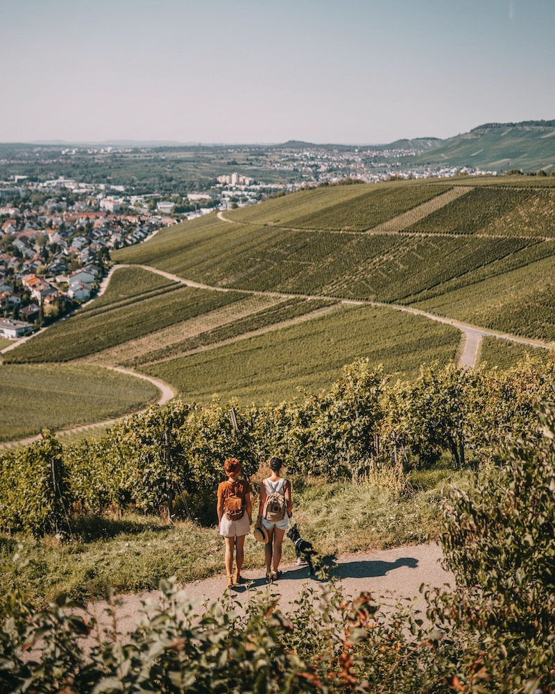 Remstal Weinstadt Ausflugsziele Stuttgart