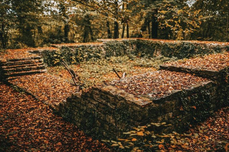 Burgruine Burgwäldchen